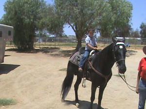 horse-riding-child